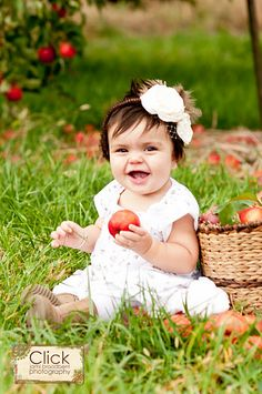 orchard baby