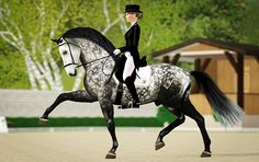 This is the same dapple grey sims 3 horse as the post before this one! :)