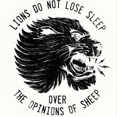 Lions to not lose sleep over the opinions of sheep
