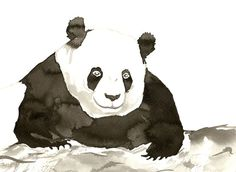 Panda Bear is a sumi-e (Japanese Brush Painting) in my series of minimalist zen artworks. I used traditional soot ink and powerful brush