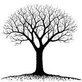 tree outline : Bare tree