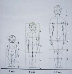 Etude des PROPORTIONS du corps humain chez les ENFANTS et ADOLESCENTS - Domi Dessins et Peintures