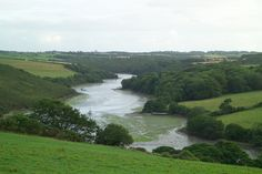 Helford River - the home of our oyster farm.