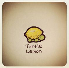 Turtle lemon