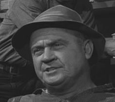Dub Taylor as Emmett's brother-in-law (insurance salesman) and as the mailman and other charcters
