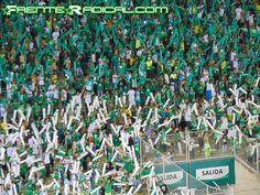 Fecha 19. Deportivo Cali 1-4 Once Caldas - 6 de Noviembre - DSC01454 - Frente Radical Verdiblanco Ultras - www.FrenteRadical.com