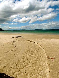 Hobart, Tasmania, Australia Tasmania Hobart, Australia, Island, Explore, Beach, Water, Outdoor, Destinations, Viajes