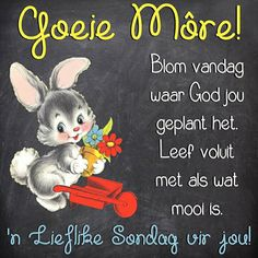 Goeie More, Afrikaans, God, Cards, Dios, Map, Afrikaans Language, Playing Cards, The Lord