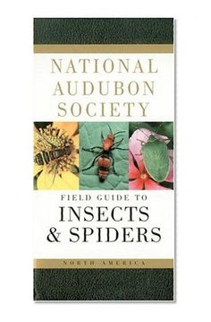 National Audubon Society Field Guide to North American Insects and Spiders (National Audubon Society Field Guides)/NATIONAL AUDUBON SOCIETY