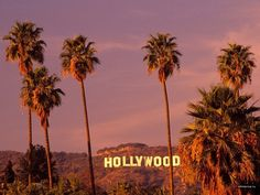 The historical Hollywood sign stands high above the city, welcoming everyone to the history of the movie industry and haven for all-things-entertainment.
