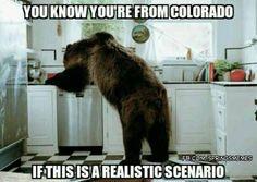47 Best Colorado Quotes images | Colorado quotes, Colorado