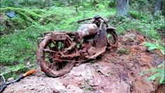 A WWII Treasure Buried in the Forest - http://www.warhistoryonline.com/war-articles/wwii-treasure-buried-forest.html