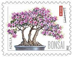 Bonsai Azalea, a postage stamp, USA