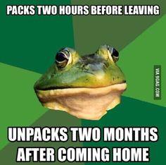 Foul Bachelor Frog on vacation