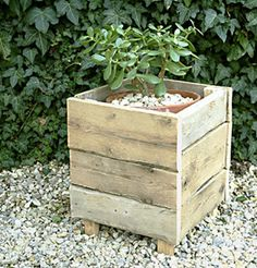Pallet Wood Planter Box to cover 5 gallon buckets of plants. Great idea.