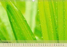 Monatskalender: Emotions in Green #grün #Pflanze #Kalender