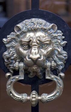 Llamador león... \ (^ о ^) /