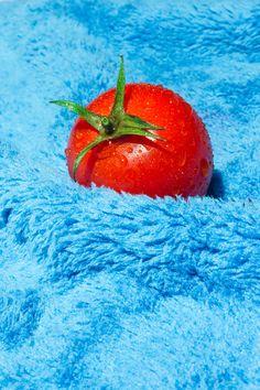color | red tomato on fuzzy blue, via Maurizio Di Iorio