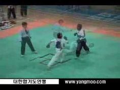 Hapkido  - combat demo and other techiniques
