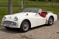 1959 Triumph TR3. If anyone wants to buy me a present.