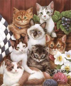 Many cats paintings. Jenny Newland - Kitties.