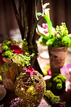 natural organic enchanted forest bethesda maryland wedding reception the observatory14 275x412 Kate + Joshs Enchanted Forest Inspired Maryland Wedding Reception