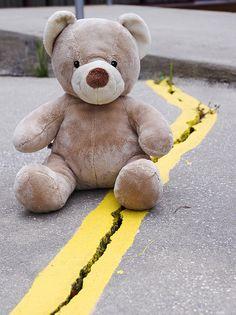 http://fineartamerica.com/featured/teddy-bear-3-william-patrick.html