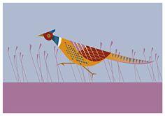 Beautiful illustrations of Irish birds by Yellowhammer