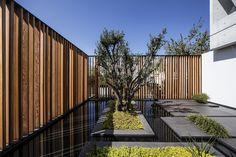Gallery of The S House / Pitsou Kedem Architects - 3