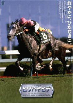 ビワハヤヒデ Biwa Hayahide (JPN) 1990 Gr.h. (Sharrood (USA)-Pacificus (USA) by Northern Dancer (CAN) Horse of the Year (1993), Best 3YO Colt (1993), Best Older Horse (1994) Winner of the Kikuka Sho (G1), Takarazuka Kinen (G1), Tenno Sho Spring (G1), Daily Hai Sansai S (G2), Kobe Shimbun Hai (G2), Kyoto Kinen (G2), All Comers (G3); Placed in the Tokyo Yushun (G1), Satsuki Sho (G1), Arima Kinen (G1), Asahi Hai Sansai S (G1), Kyodo News Service Hai Yonsai S (G3)