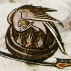 ... pelicans includes many images of pelicans in their piety and pelicans