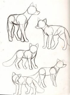 40 Free & Easy Animal Sketch drawing information and .- 40 Free & Easy Animal Sketch Zeichnen von Informationen und Ideen 40 Free & Easy Animal Sketch Drawing information and ideas - Fox Drawing, Furry Drawing, Sketch Drawing, Drawing Animals, Wolf Drawing Easy, Anime Sketch, Wolf Sketch Easy, Drawing Birds Easy, How To Sketch