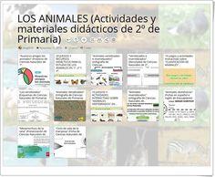 12 Actividades y materiales didácticos para el estudio de LOS ANIMALES en 2º de Primaria Map, Science Area, Teaching Resources, Learning, Studio, Activities, Animales, Location Map, Maps