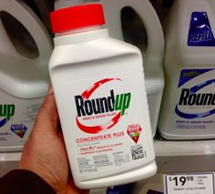 In a complete contradiction of one of its own committees, the World Health Organization (WHO) has concluded that Glyphosate is unlikely to cause cancer. How will this decision from the experts from the U.N.'s Food and Agriculture Organization of the United Nations (FAO) and WHO change the ongoing dialogue worldwide about the commonly used herbicide?