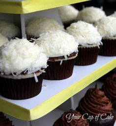 Coconut Cupcakes...white cake mix dipped in chocolate ganache, coated with coconut cream cheese frosting