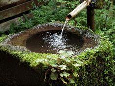Moss Covered Tsukubai つくばい