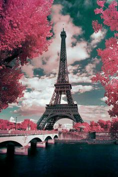 Spring in beautiful Paris