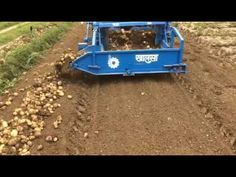 Potato harvester in india Potato Harvester, Container Gardening, Farming, Walks, Homesteading, Blessings, Blessed, Peace, Indian