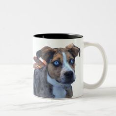 I think I can fly - Butterfly dog mug - dog puppy dogs doggy pup hound love pet best friend