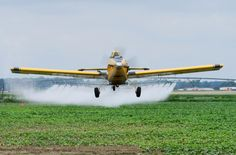 this is the food Obama wants you to eat. 79 Monsanto teen workers hospitalized after being crop dusted