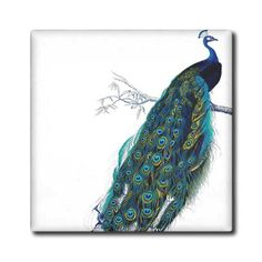 3dRose ct_113188_5 Vintage Peacock Art-Blue and Green Elegant Stylish Bird on Branch Beautiful Tail Feathers-White-Glass Tile, 4-Inch 3dRose http://www.amazon.com/dp/B00KE2LJSG/ref=cm_sw_r_pi_dp_gXNVub134FP0R
