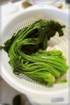 葉物野菜の簡単!ゆで方  by michipapa [クックパッド] 簡単おいしいみんなのレシピが242万品