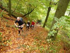 Trail #Marathon #Heidelberg am 27.10.2013 - Welcher Läufertyp bist Du? -  Bericht, Bilder und Film von Günter Kromer: http://laufspass.com/laufberichte/2013/trail-marathon-heidelberg-2013.htm