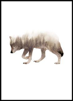 Wolf poster, Desenio