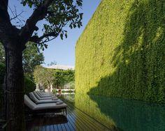 137 Pillars Hotel, P Landscape, Wison Tungthunya