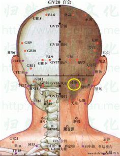 20VB un point important de la médecine chinoise. Apprenez à localiser et à masser le point Feng Chi du méridien de la vésicule biliaire.
