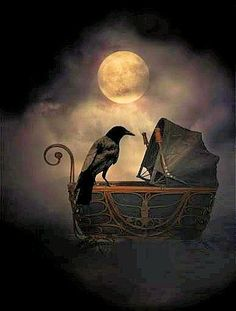 Carriage and crow. ❣Julianne McPeters❣ no pin limits Crow Art, Raven Art, Bird Art, Dark Fantasy, Fantasy Art, Raven And Wolf, Crows Ravens, Gothic Art, Illustrations