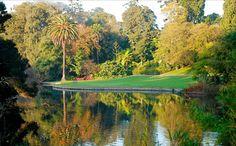 Royal Botanic Gardens Victoria, Nature and wildlife, Melbourne, Victoria, Australia Melbourne Australie, Urban Park, Free Things To Do, Parcs, World's Biggest, Park City, Botanical Gardens, Trip Advisor, Tourism