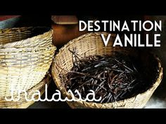 Le Prix de la vanille de Madagascar 2016 • Brasil-France