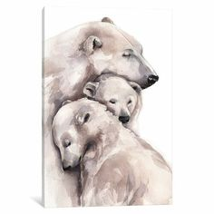 'Polar Bear' Watercolour Painting on Wrapped Canvas East Urban Home Size: 66 cm H x cm W x cm D Polar Bear Paint, Polar Bear Drawing, Polar Bear Tattoo, Bear Watercolor, Watercolor Animals, Watercolour On Canvas, Watercolour Paintings, Art D'ours, Bear Paintings